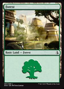 akh-267-forest